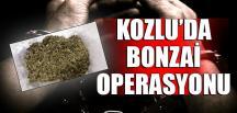 KOZLU'DA BONZAİ OPERASYONU