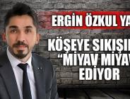 """KÖŞEYE ŞIKIŞINCA """"MİYAV MİYAV"""" EDİYOR"""